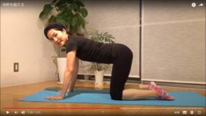 基本姿勢は四つん這い。肩の下に手のひら、骨盤の下に膝を持ってくる。